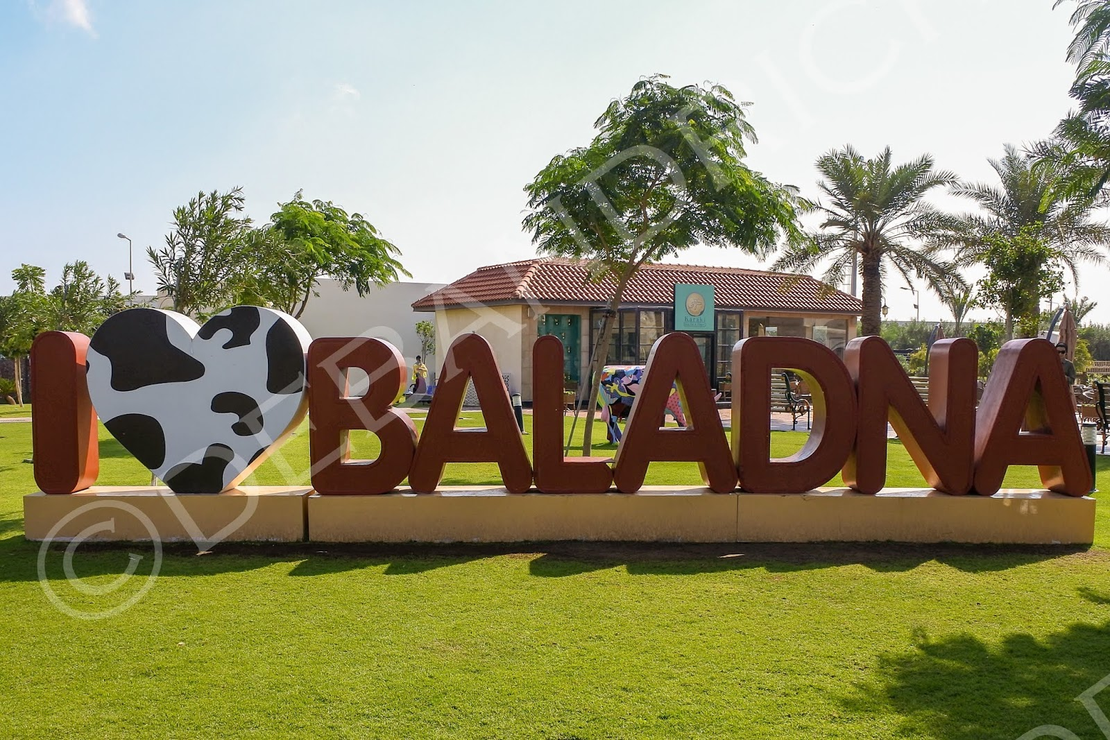 Baladna Farm Qatar Jobs